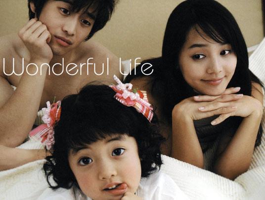 Wonderful Life Korean Drama Dvd Poh Kim Video